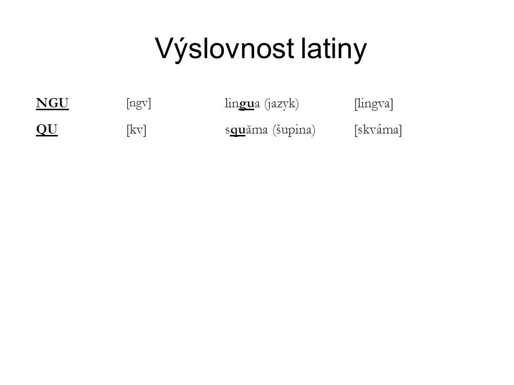 Výslovnost latiny NGU lingua (jazyk) [lingva] QU [kv] squāma (šupina)
